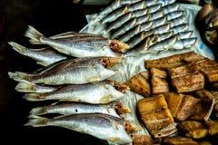 Gesalzene Fische Lizenzfreie Stockfotos