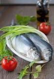 Gesalzene Heringe mit Frühlingszwiebel und Tomaten Lizenzfreie Stockbilder