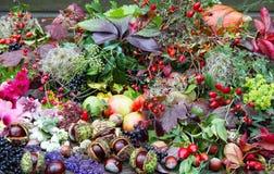 Gesammelte Herbstschätze, floristry stockfoto