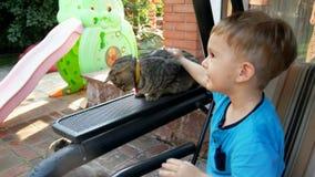 Gesamtlänge 4k des netten Kleinkindjungen, der auf Bank am Hinterhof und an streichelnder grauer Katze sitzt stock video