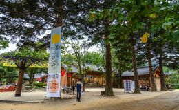 Geschäfte in Nami Island, Korea lizenzfreie stockfotos
