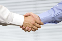 Geschäfts-Händedruck-Handerschütterung Lizenzfreies Stockfoto