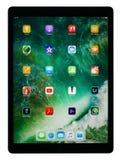 Geschäfts-Tablet IPad Pro-12,9 Stockbilder
