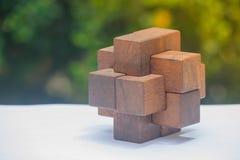 Geschäfts-Teamwork-Konzept: Hölzerner Brain Teaser oder hölzerne Puzzlespiele auf weißem Boden und grünem Busch mit Sonnenlichthi Stockfotografie