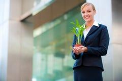 Geschäfts-Wachstum Stockfoto