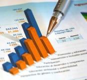 Geschäftsbericht Lizenzfreies Stockbild