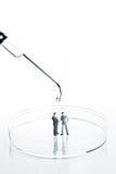 Geschäftsfigürchen in einer Petrischale Lizenzfreies Stockfoto