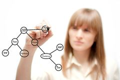 Geschäftsfrau, die einen Organisationsplan zeichnet Lizenzfreie Stockfotografie