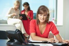 Geschäftsfrau, die Rechner verwendet Lizenzfreie Stockbilder