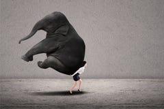 Geschäftsfrau, die schweren Elefanten anhebt Stockbilder