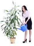 Geschäftsfrau und Geld lizenzfreies stockfoto