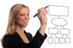 Geschäftsfrau-Zeichnungs-Diagramm Lizenzfreie Stockbilder