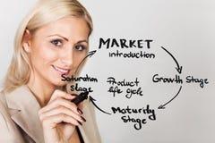 Geschäftsfrauzeichnungs-Produktlebenszyklusdiagramm Stockfotos