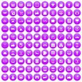 100 Geschäftsikonen purpurrot eingestellt Stockbild
