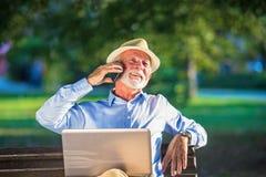 Geschäftskorrespondenz Fokussierter reifer Geschäftsmann unter Verwendung des Laptops beim Sitzen im Park lizenzfreie stockfotografie