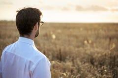Geschäftsmann auf einer Wiese bei Sonnenaufgang stockbilder