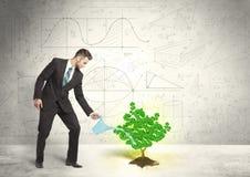 Geschäftsmann, der einen wachsenden grünen Dollarzeichenbaum wässert Lizenzfreie Stockbilder