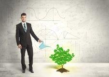 Geschäftsmann, der einen wachsenden grünen Dollarzeichenbaum wässert Stockfotografie