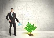 Geschäftsmann, der einen wachsenden grünen Dollarzeichenbaum wässert Lizenzfreie Stockfotografie