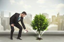 Geschäftsmann, der grünen Baum auf Stadthintergrund wässert Lizenzfreie Stockbilder