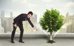 Geschäftsmann, der grünen Baum auf Stadthintergrund wässert Lizenzfreies Stockfoto