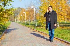 Geschäftsmann, der am Handy im Park spricht Stockbilder
