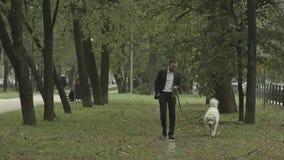 Geschäftsmann geht ruhig mit großem weißem Hund im Park lizenzfreies stockbild
