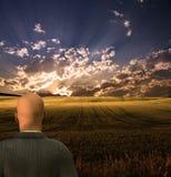 Geschäftsmann sieht schöne Landschaft an Lizenzfreies Stockfoto