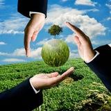 Geschäftsmann tragen Grünpflanze am Bauernhof des grünen Tees Lizenzfreie Stockbilder