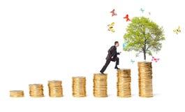 Geschäftsmann und Baum mit Schmetterlingen auf Geldtreppe Stockbilder