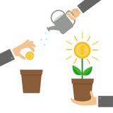 Geschäftsmannhand, die Geldbaum, Gießkanne, Samen Münzen-Dollarzeichen Anlage im Topf hält Dreistufiges infographic finanziell Stockfotografie