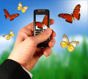 Geschäftsmannholding-Handy Stockbild
