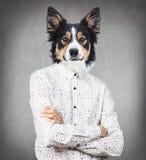 Geschäftsmannmann mit dem Kopf des Hundes lizenzfreies stockbild