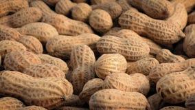 Geschälte Erdnüsse, die sich langsam drehen stock video