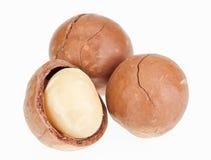 Geschälte und ungeschälte Macadamiamuttern Lizenzfreies Stockfoto