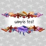 Geschöpfe von Seemuscheln auf einem Hintergrund mit Stern stock abbildung