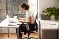 Gesch?ftsfrau-Sitting At Desk-Funktion auf Laptop im modernen B?ro lizenzfreie stockbilder
