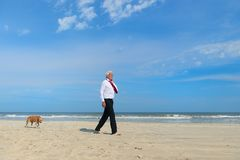 Gesch?ftsmann mit Hund am Strand stockbild