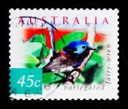 Geschakeerde lamberti van Fairywren Malurus, Aard van Australië - verlaat Vogels serie, circa 2001 Royalty-vrije Stock Afbeelding
