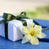 Geschenk für Mother& x27; s-Tag Lizenzfreie Stockfotografie