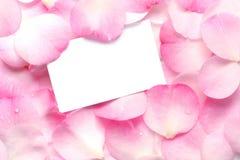 Geschenk-Karte auf rosafarbenen Blumenblättern Stockfoto