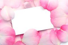 Geschenk-Karte und rosafarbene Blumenblätter lizenzfreie stockfotografie