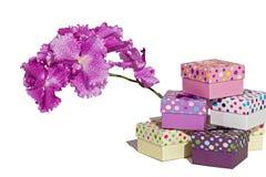 Geschenk mit einer Blume Stockbild