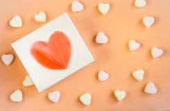 Geschenk, weißer Kasten mit einem Herzen von Federn lizenzfreie stockbilder