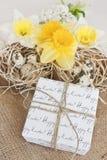 Geschenkbox für Ostern Stockfoto