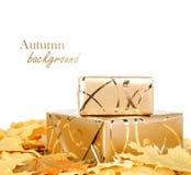 Geschenkbox im Goldpackpapier mit Herbstlaub Stockbilder