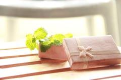 Geschenkbox mit frischer Minze stockfotografie