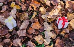 Geschenkboxen aus den Grund mit Herbstlaub lizenzfreies stockfoto