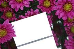 Geschenkkarte und purpurrote Blumen Lizenzfreie Stockfotos