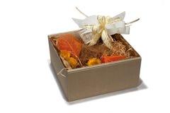 Geschenkkasten-Herbstart Stockfotos